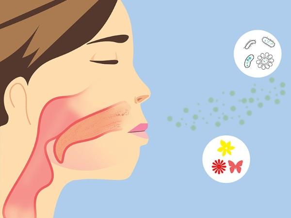 呼吸防护知识点——学习篇